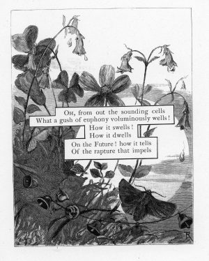 012-engraving-flowers-moth-bells-moon